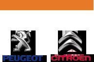 Τελωνιάτης Service | Peugeot, Citroen Μυτιλήνη – Πωλήσεις Service